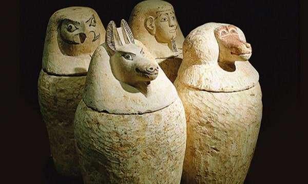 Pisos-obra-nueva-Gracia-Barcelona-biblioteca-museo-egipcio-min
